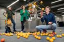 Met dank aan sapcentrifuges in supermarkten kan Peel Pioneers heel wat sinaasappelschillen verwerken. De drie oprichters staan hier in de fabriekshal in Den Bosch.