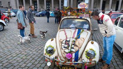 300 VW Kevers tekenen present op tiende Love Bugs Parade