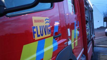 Auto met Franse nummerplaat 's nachts in brand gestoken