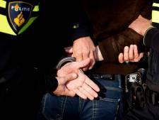Vrouw uit Hall breekt pink van politieagente en veroorzaakt constant chaos, maar vergeet bijna alles