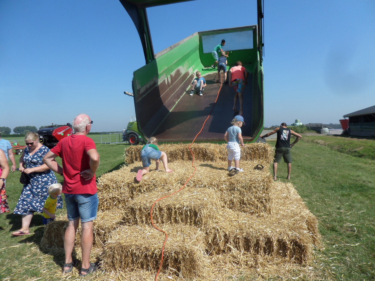 Kinderen vermaken zich prima op de Boerenerfdag.