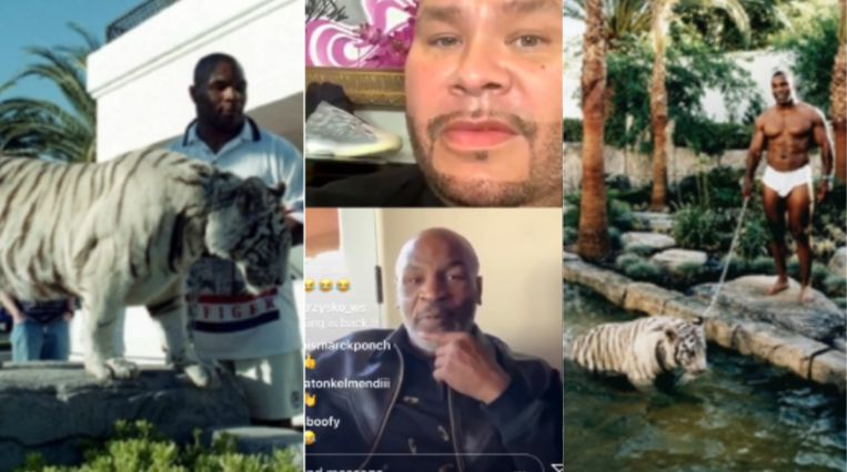 Mike Tyson met zijn Bengaalse tijger.
