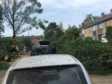 Storm zorgt voor schade aan auto's en huizen in de regio, tornado treft Rheden