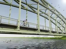 Grijze trambrug in Schipluiden wordt groen