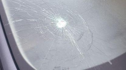 Vandalen trekken spoor van vernieling, tiental auto's beschadigd in Lanaken