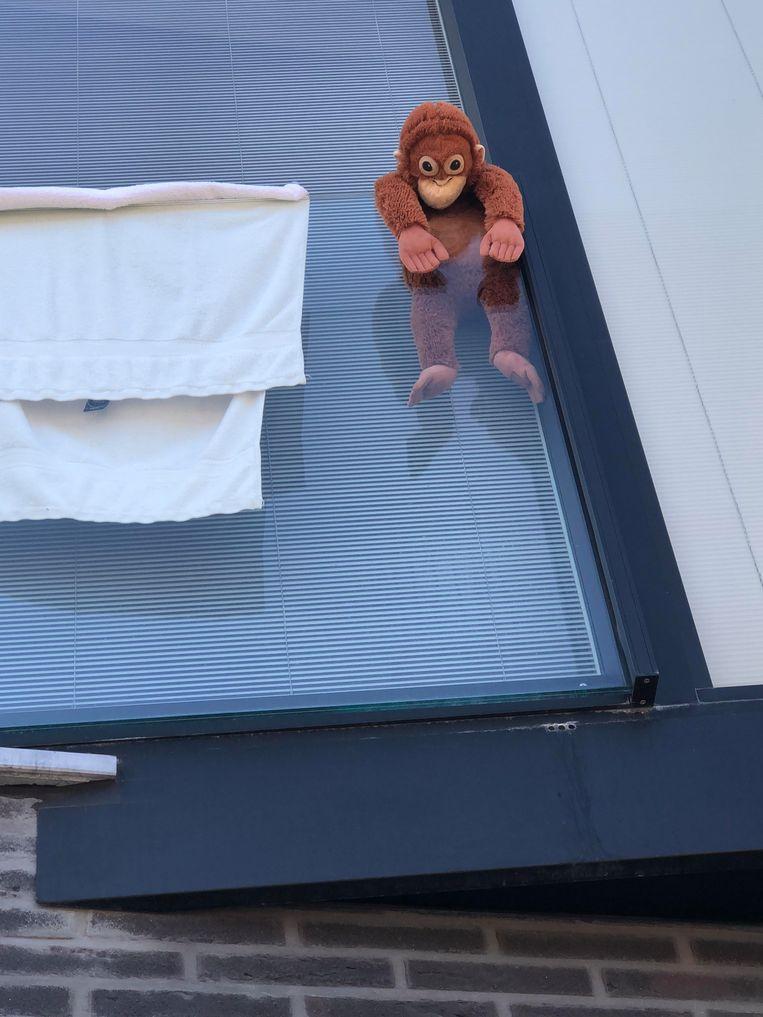 Die gekke beren toch...