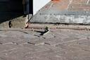 Voor de deur van Down Town vond de politie resten van een handgranaat.