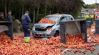 Vallende appelen herleiden twee auto's tot schroot in Sint-Truiden