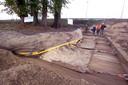 De linden die verplaats werden bij de verbreding van de A2 in 2004.