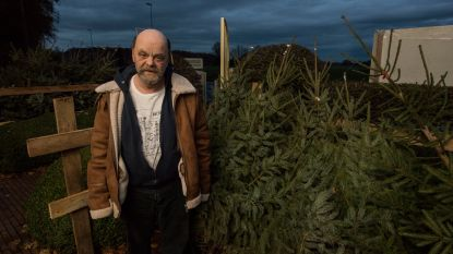 Kerstbomen te koop in De Lovie