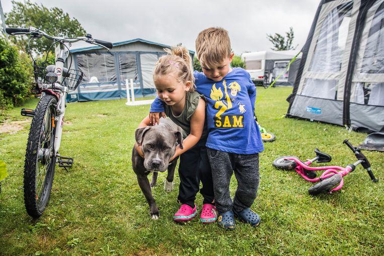 Kinderen spelen op camping De Pekelinge. Beeld Aurélie Geurts