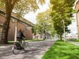 Lot biomassacentrale Arnhem in handen provincie