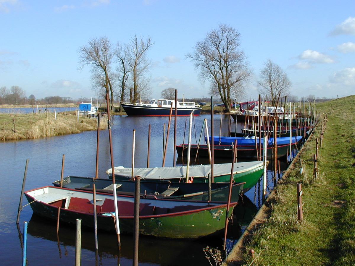 Bootjes die het waterschap gaat verwijderen. Ze belemmeren de waterafvoer als in de wintermaanden het waterpeil stijgt.