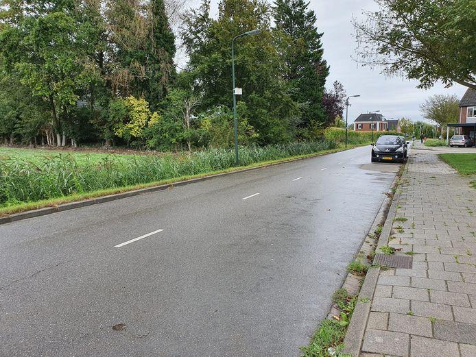 De Koningin Julianastraat in Tholen.