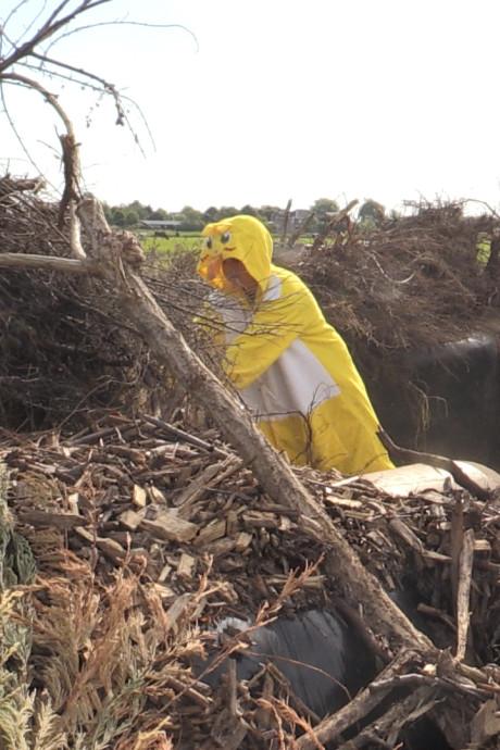 Twaalfjarige Tim Gravesteyn bouwt gigantisch vogelnest in Pijnacker