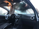 De zwaan overleefde het ongeval met de auto op de A17 niet.