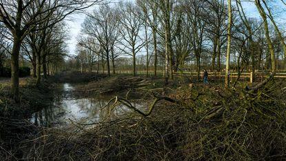 Ongenoegen over drastische bomenkap antitankgracht