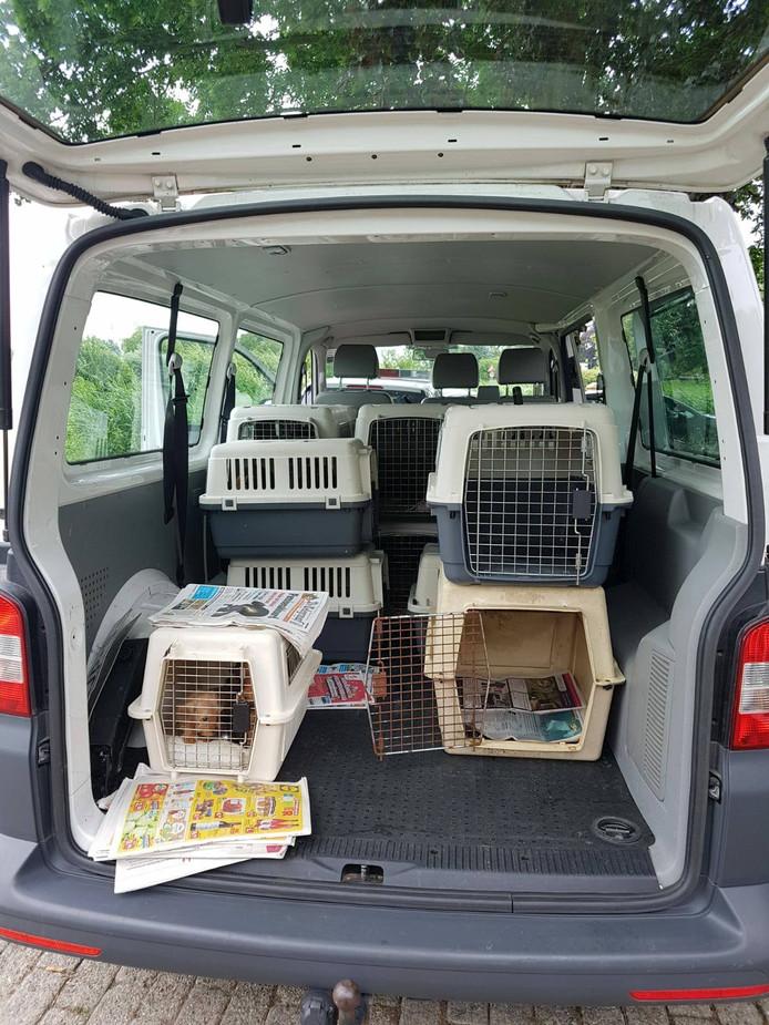 De politie nam 120 honden in beslag bij de fokkerij.