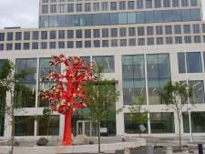 Rechtbank trakteert Bossche kickbokser Mohammed J. op dubbele optater, maar géén cel