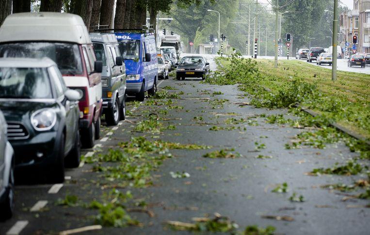 Een straat in Den Haag bezaaid met afgewaaide takken Beeld anp