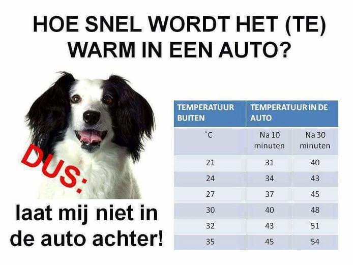 Zo heet wordt het in een auto die in de zon staat.