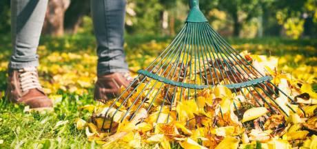 Zo maak je de tuin winterklaar