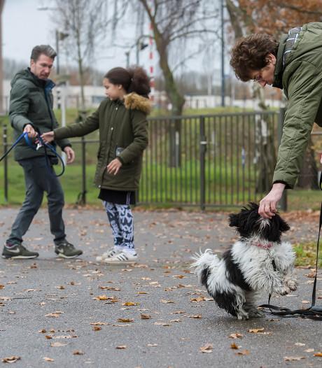 Maak van elke wandeling met de hond een feestje in Oosterhout
