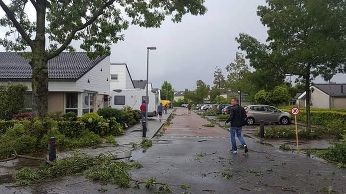 De stormschade in de Koepel in Zeelst