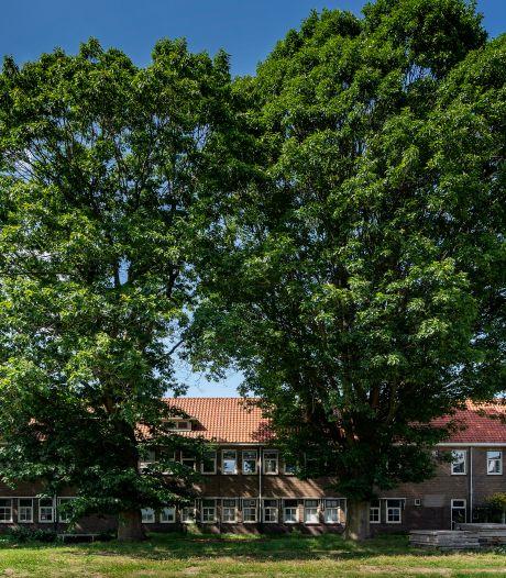 Dure huizen belangrijker dan bomen: bouwplan Boxtel gaat door