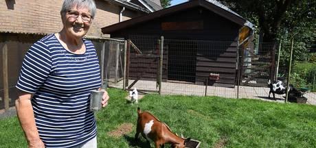 Thea's jonge geitjes zijn megahit op YouTube