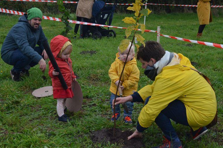 De stad Gent plant al elk jaar een geboortebos maar wil nu ook een groepsaankoop van bomen organiseren