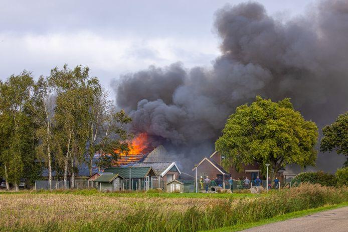 Bij een hondenfokkerij in Hasselt woedt maandagmiddag een hevige brand.