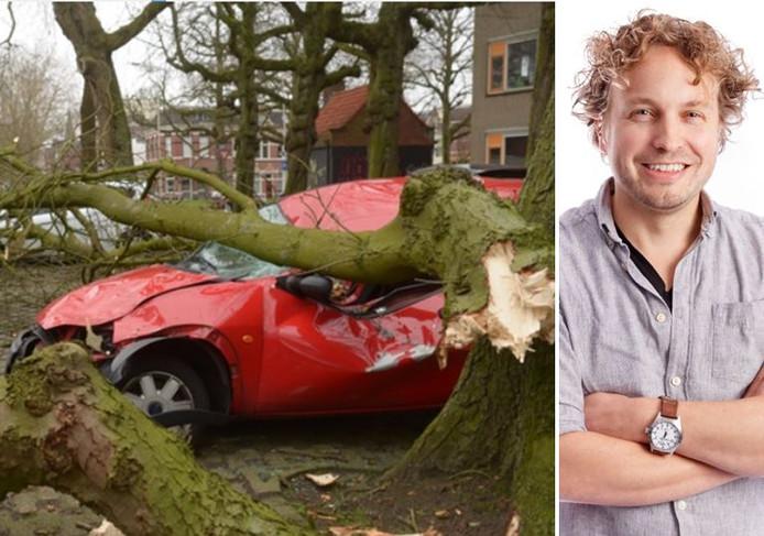 Een boom plet een auto in Bergen op Zoom. Dat zou je nog kunnen zien als groene vergelding, aldus columnist Niels Herijgens. ,,Maar die boom moet zo'n kamikazeactie ook met de dood bekopen.''