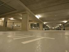 Steeds meer parkeerders in Basiliek
