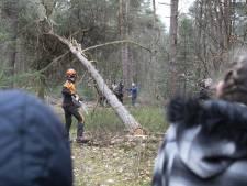 Kijken naar omvallende bomen in Holten: voor deze mensen is dat een dagje uit