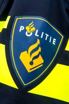 Automobilist zwaait met vuurwapen op de A2; politie zocht wapen in de berm