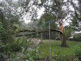 Zo ziet de stormschade in Oost-Nederland eruit