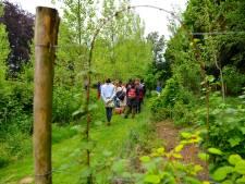 Voedselbos in Schijndel vergt nog een lange adem