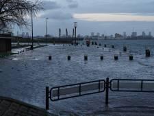 Kades Schiedam en Vlaardingen onder water door hoge waterstand
