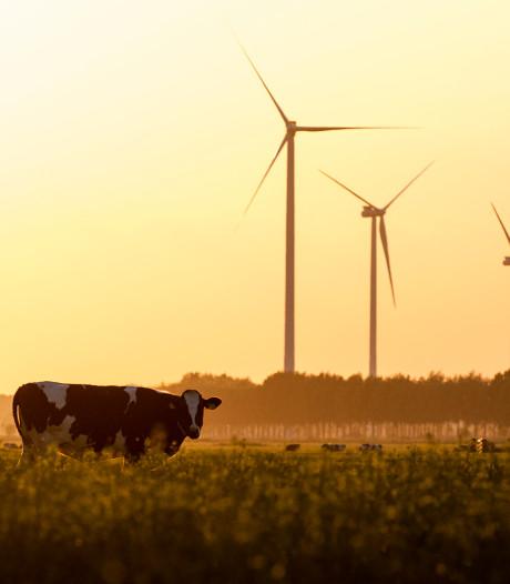 Eneco: 'Laat windmolens in Houten voortaan maximaal draaien'