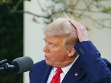 Loser.com leidt opnieuw naar Wikipediapagina Donald Trump