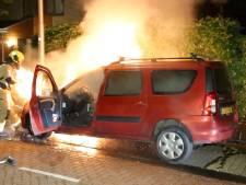 Bewoners schrikken wakker van autobrand in Pijnacker