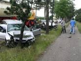 Automobilist richt ravage aan in Strijbeek