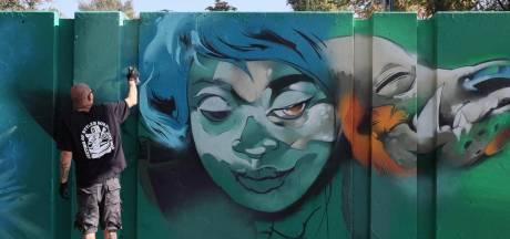 Voor graffiti-artiesten is de Eindhovense Berenkuil de Champions League