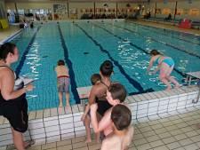 Gemeente Nissewaard stelt eisen aan kwaliteit zwemwater na ophef over te veel chloor