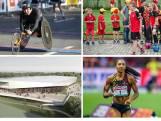 Handicap, éducation, haut niveau, infrastructures: que proposent les partis pour le sport?