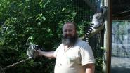 """Financiële crisis dierenpark De Zonnegloed afgewend: """"Die heropening komt niets te vroeg, de geldreserves waren op"""""""