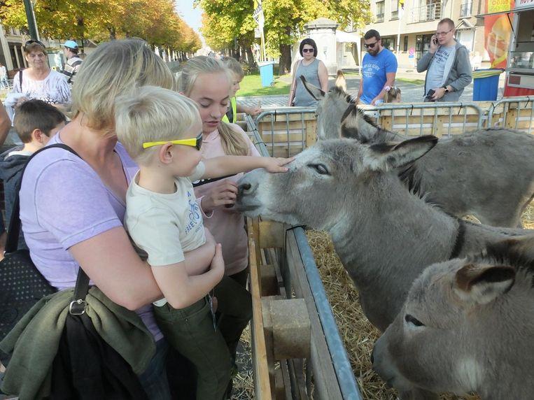 Tiany (12) en haar broer Daan (4) zijn grote fan van de ezels.