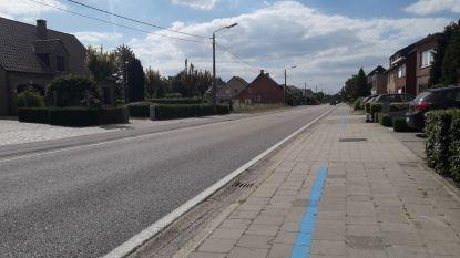 Drukke verkeersader in Herenthout gaat eind juli voor vier weken dicht