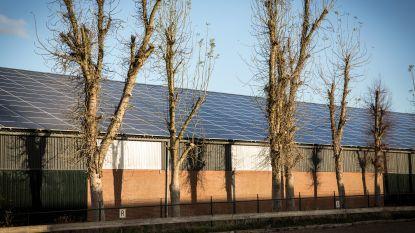 Goed idee?  In Nederland vervangt Essent asbestdaken gratis voor zonnepanelen (en het houdt de stroom)